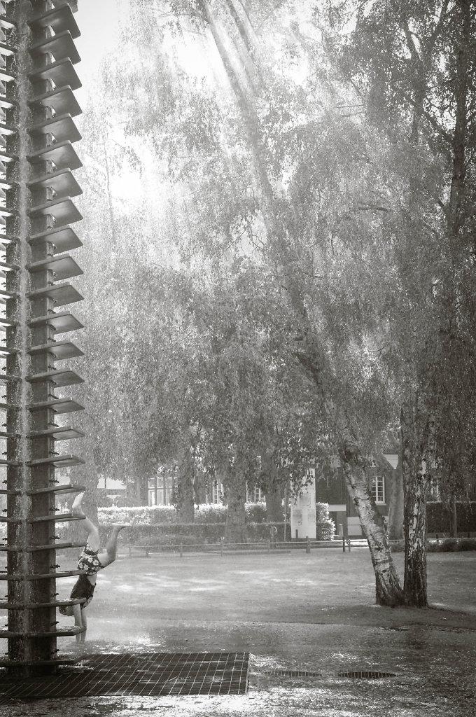 IMGP1933.jpg